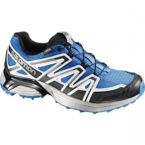 Salomon XT Hornet gtx blue