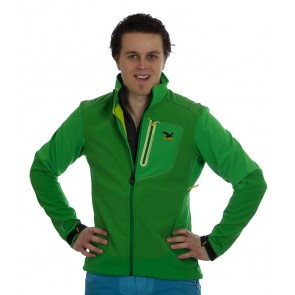 Salewa Vishnu Men Jacket green